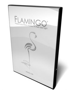 Flamingo nXt Educational Lab Kit (Complete version)